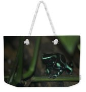 Poisonous Green Frog 04 Weekender Tote Bag