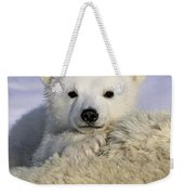 Polar Bear Cub Canada Weekender Tote Bag