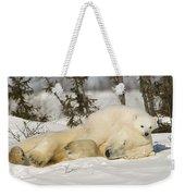 Polar Bear With Cub In Snow Weekender Tote Bag