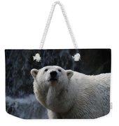 Polar Bear With Waterfall Weekender Tote Bag