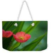 Poppies Vibrance Weekender Tote Bag