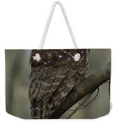 Portrait Of A Barred Owl Perched Weekender Tote Bag