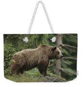 Portrait Of A Brown Bear Weekender Tote Bag