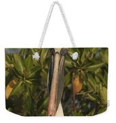 Portrait Of A Brown Pelican Pelecanus Weekender Tote Bag