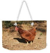 Portrait Of A Chicken Weekender Tote Bag