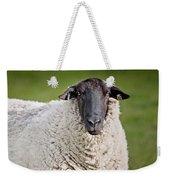 Portrait Of A Sheep Weekender Tote Bag