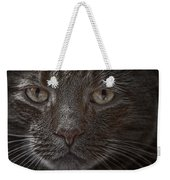 Portrait Of Cutio The Cat Weekender Tote Bag