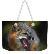 Portrait Of Gray Fox Barking Weekender Tote Bag