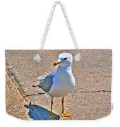 Posing Gull Weekender Tote Bag