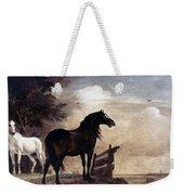 Potter: Horses, 1649 Weekender Tote Bag