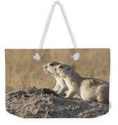 Prairie Dog Pair Grasslands Np Weekender Tote Bag