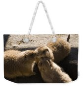 Prairie Dog Gossip Session Weekender Tote Bag