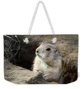 Prairie Dog Lookout Weekender Tote Bag