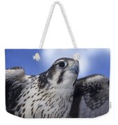 Prairie Falcon In Flight Weekender Tote Bag
