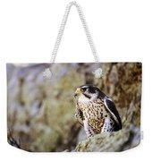 Prairie Falcon On Rock Ledge Weekender Tote Bag