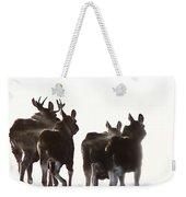 Prairie Moose Saskatchewan Weekender Tote Bag