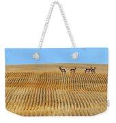 Prairie Pronghorns Weekender Tote Bag