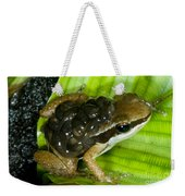 Pratts Rocket Frog With Young Weekender Tote Bag