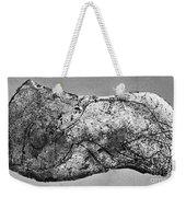 Prehistory: Engraving Weekender Tote Bag