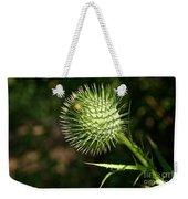 Prickly Globe Weekender Tote Bag