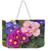 Primrose Primula Sp Flowers Weekender Tote Bag
