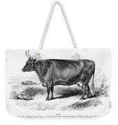 Prize Devon Cow, 1855 Weekender Tote Bag