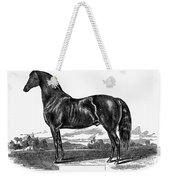 Prize Horse, 1857 Weekender Tote Bag