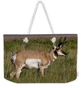 Pronghorn Male Custer State Park Black Hills South Dakota -1 Weekender Tote Bag