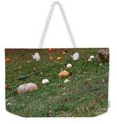 Pumpkins Weekender Tote Bag by Susan Herber