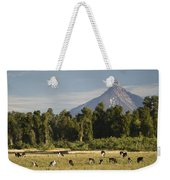 Puntiagudo Volcano In The Background Weekender Tote Bag