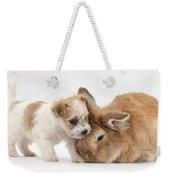 Pup And Rabbit Weekender Tote Bag