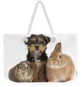 Pup, Guinea Pig And Rabbit Weekender Tote Bag