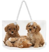 Puppies And Kitten Weekender Tote Bag