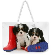 Puppies With Rain Boats Weekender Tote Bag