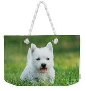 Puppy West Highland White Terrier Weekender Tote Bag