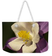 Purple And White Columbine Blossom Facing The Sun - Aquilegia Weekender Tote Bag