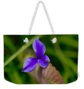 Purple Bromeliad Flower Weekender Tote Bag by Douglas Barnard