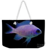 Purple Chromis Weekender Tote Bag
