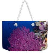 Purple Sea Fan In Raja Ampat, Indonesia Weekender Tote Bag