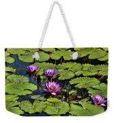 Purple Water Lilies - Nymphaea Capensis  Weekender Tote Bag
