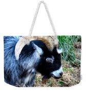 Pygmy Goat Weekender Tote Bag
