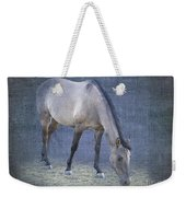 Quarter Horse In Blue Weekender Tote Bag by Betty LaRue