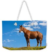 Quarter Horse Weekender Tote Bag