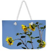 Quicksilver Sun Weekender Tote Bag