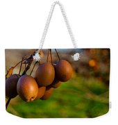 Quince In The Early Moning Sun Weekender Tote Bag