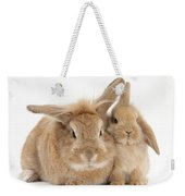 Rabbit And Baby Rabbit Weekender Tote Bag