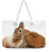 Rabbit And Guinea Pigs Weekender Tote Bag