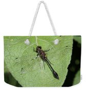 Racket-tailed Emerald Dragonfly Weekender Tote Bag