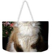 Ragdoll Cat Licks His Lips Weekender Tote Bag