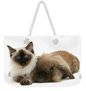 Ragdoll Kitten And Lionhead Rabbit Weekender Tote Bag